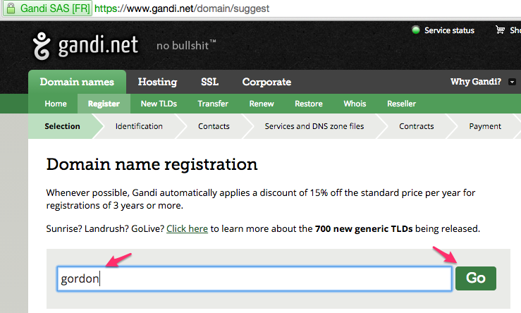 Example of Gandi Domain Name Searching on Gordon